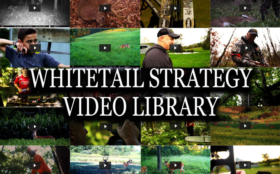 Whitetail Video Library