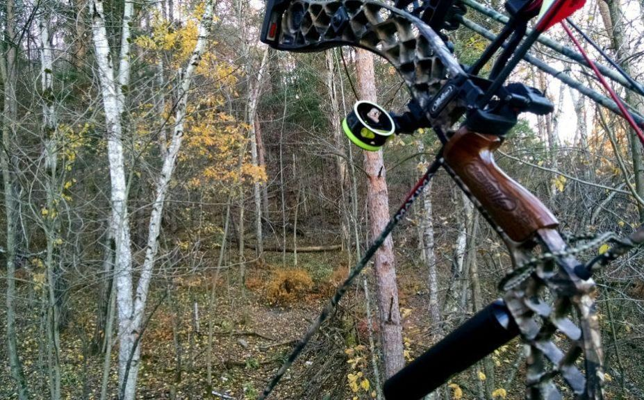 all day sit for whitetails