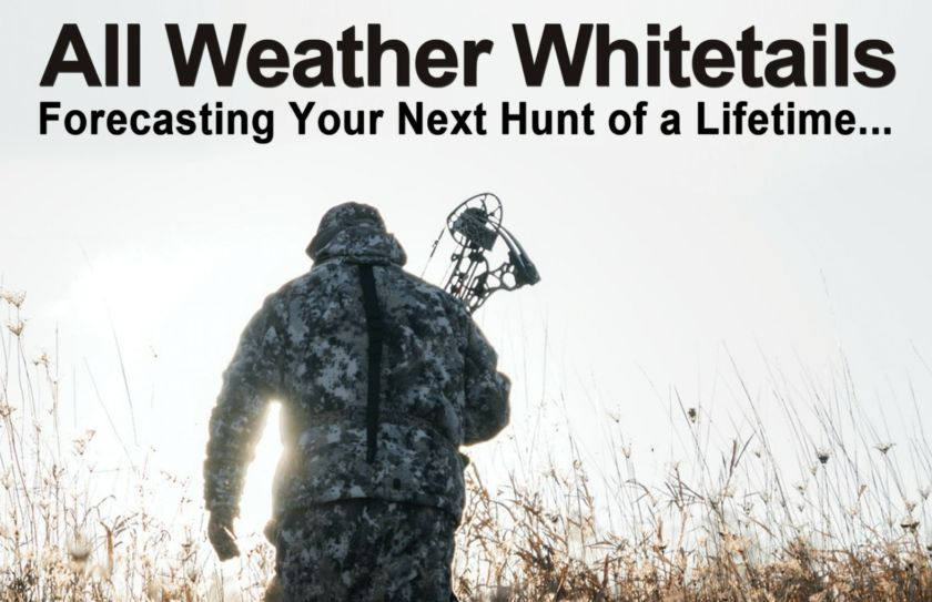 All Weather Whitetails