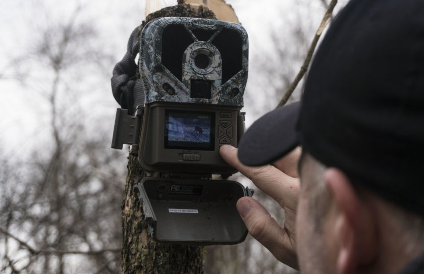 Trail cam survey